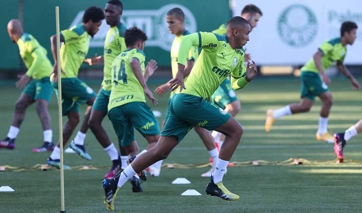 Reprodução/Site oficial do Palmeiras