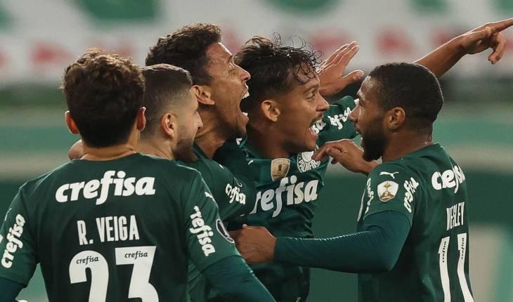© Cesar Greco/Palmeiras/Direitos Reservados (Agência Brasil)