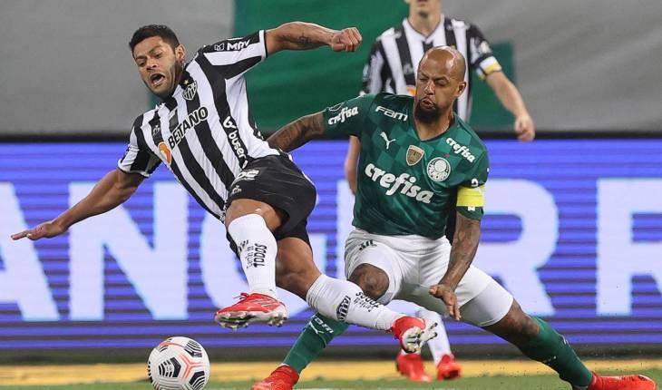© Cesar Greco/Palmeiras/Direitos Reservados ( Agência Brasil)