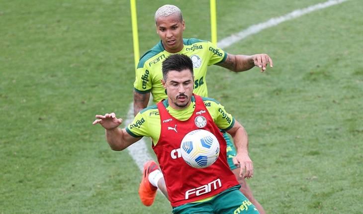 Reprodução / Twitter /  Palmeiras